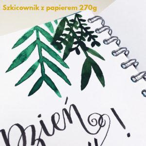 kaligrafia brush peny frannys